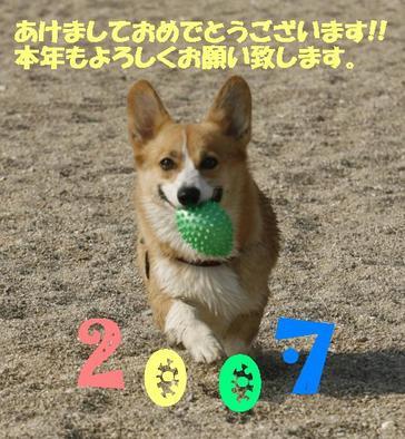 Photo_52